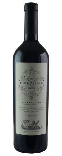 2013 Bodega Aleanna Gran Enemigo Gualtallary Single Vineyard