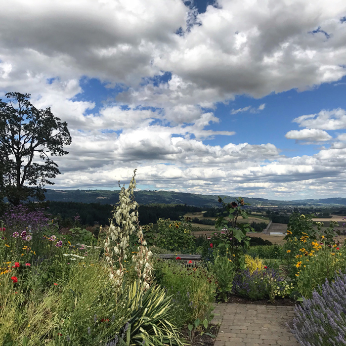willamette valley view