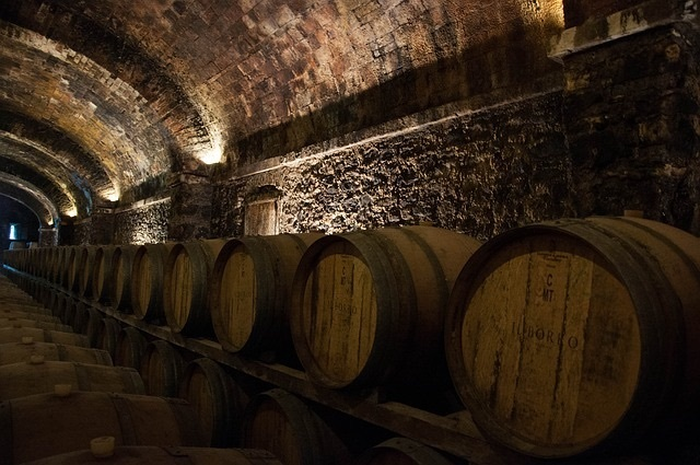 Best wines to age in your collection - barrels in a cellar